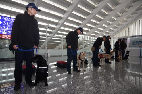 Các sĩ quan cùng chó nghiệp vụ kiểm tra tại sân bay quốc tế Đào Viên. Đài Loan bắt đầu kiểm tra gắt gao mọi hành khách từ Việt Nam để tìm các sản phẩm từ thịt lợn, sau khi một người đến từ TP HCM mang theo bánh mì thịt dương tính với virus tả lợn vào đầu tháng 2. Ảnh: Central News Agency.