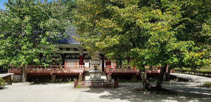 Hiện có khoảng 20 nhà sư đang tu tập tại chùa. Đường vào khuôn viên quanh năm phủ bóng mát bởi hàng thông lâu năm.