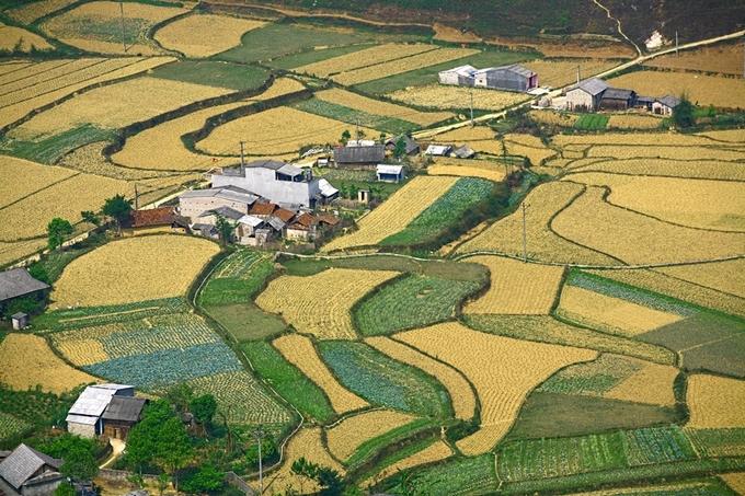 Đồng ruộng, nhà cửa… dưới thung lũng đan xen thành những bức tranh ấn tượng vào ngày mùa.