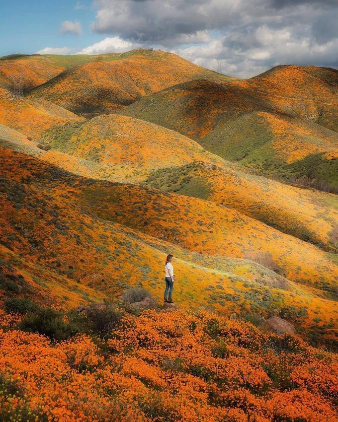 Khung cảnh mênh mông, hoang dã tràn ngập màu sắc biến nơi đây trở thành bức tranh hoàn hảo do thiên nhiên ban tặng.