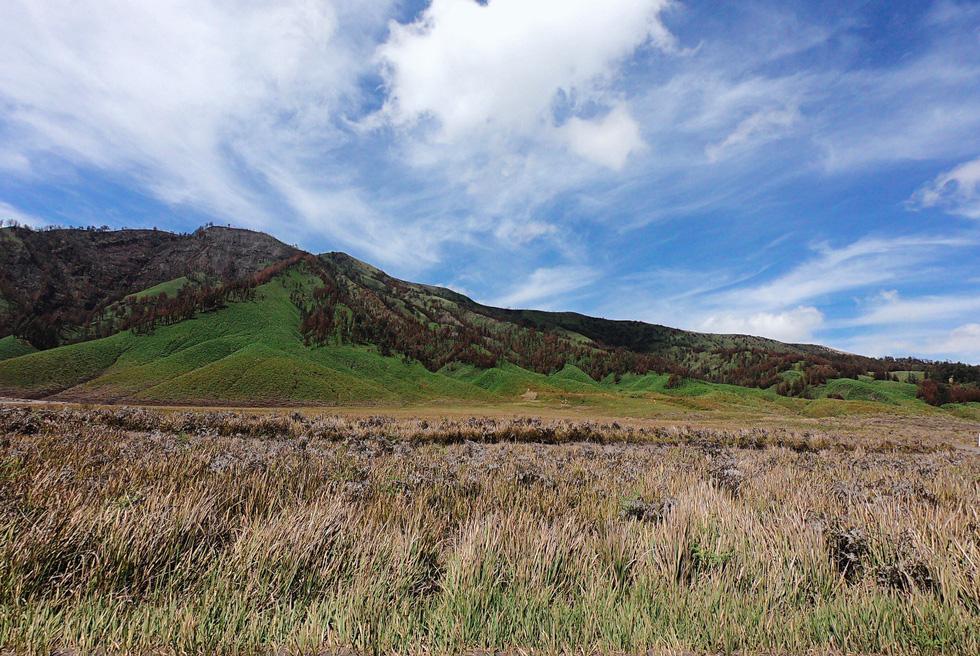 Địa điểm tiếp theo sau Bromo chính là Teletubbies Hill. Đây là một cao nguyên rộng lớn với những hàng cỏ xanh rì nằm đằng sau núi Bromo - Ảnh: NGÔ HOÀNG ANH