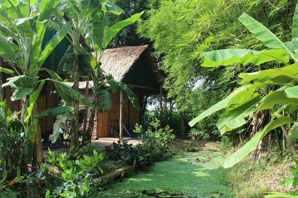 Green Village Mekong - ivivu-4