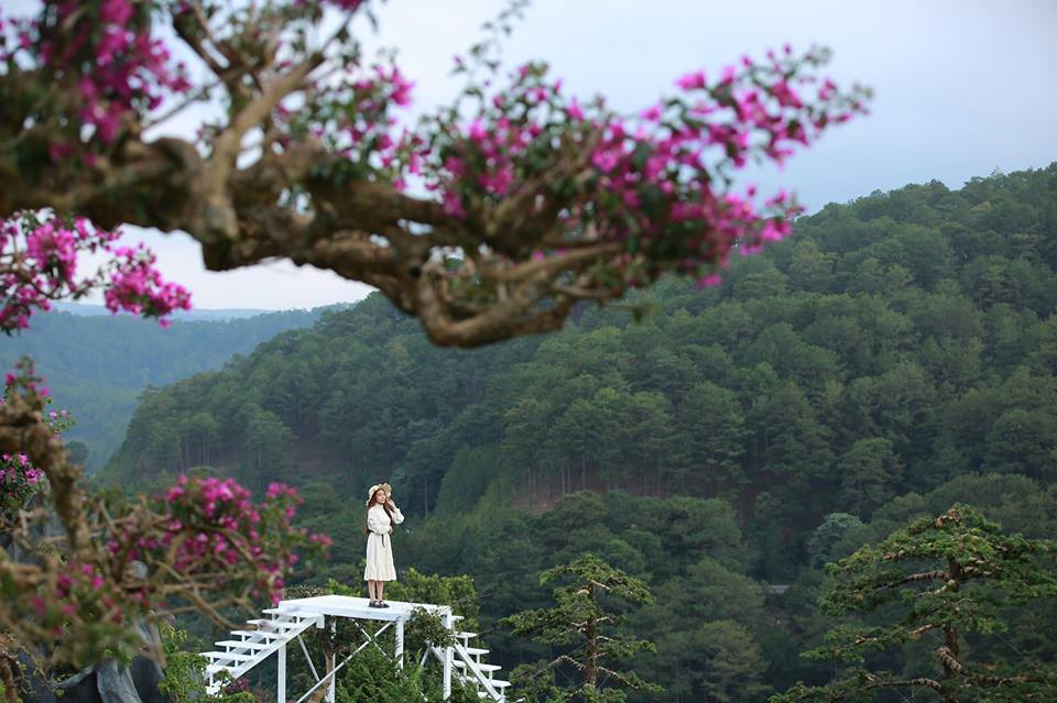 QUE Garden, tiểu Nhật Bản đẹp ngẩn ngơ giữa lòng Đà Lạt - iVIVU.com