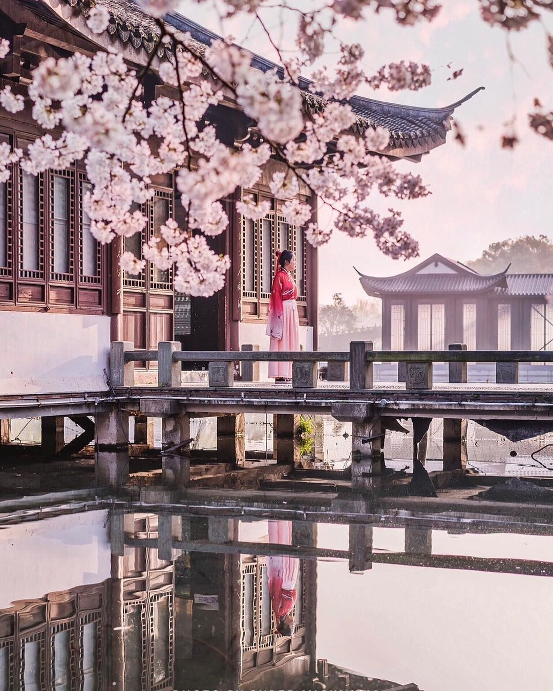 Ảnh: nowdiscovering