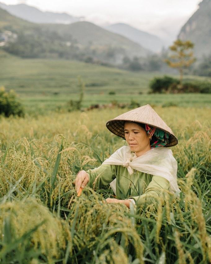 Nhiếp ảnh gia du lịch người Bỉ Kevin Faingnaert từng có nhiều tác phẩm đăng trên các website, tạp chí nổi tiếng như AFAR, Wired và Outdoor Magazine. Trong chuyến du lịch miền Bắc mới đây, Kevin đã ghi lại nhiều hình ảnh bình dị của đất nước và con người Việt Nam qua góc nhìn đặc biệt của mình.