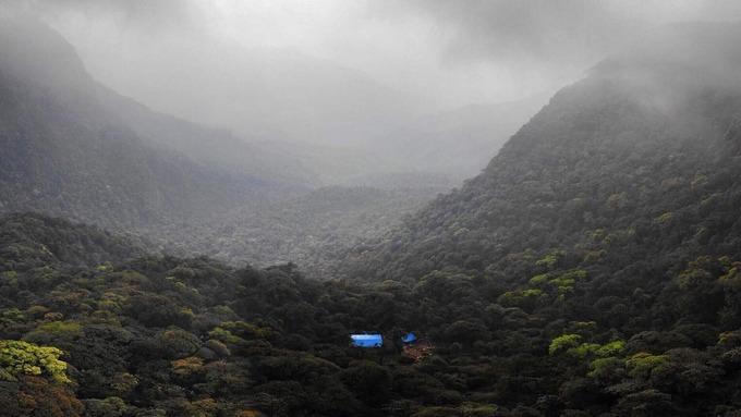 Cánh rừng rộng bạt ngàn, chỉ duy nhất có một lán trại nằm lẻ loi.