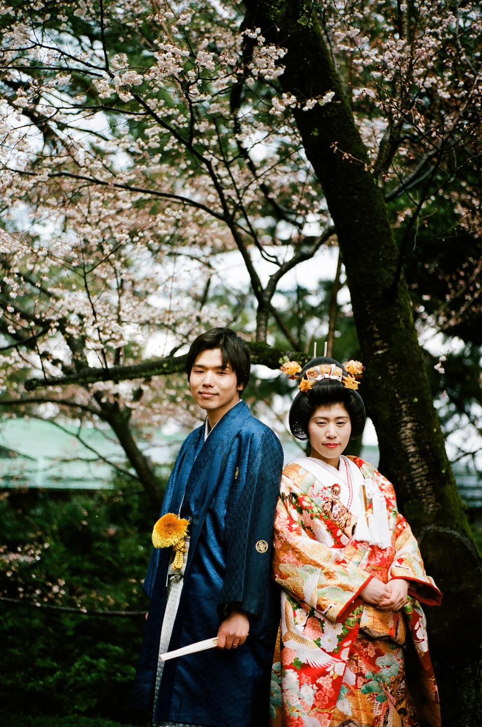 Một đôi bạn trẻ người Nhật chụp hình cưới với trang phục truyền thống trong vườn Kenrokuen ở Kanazawa. Đây là một trong ba khu vườn đẹp nhất ở Nhật - Ảnh: ĐĂNG TRÌNH