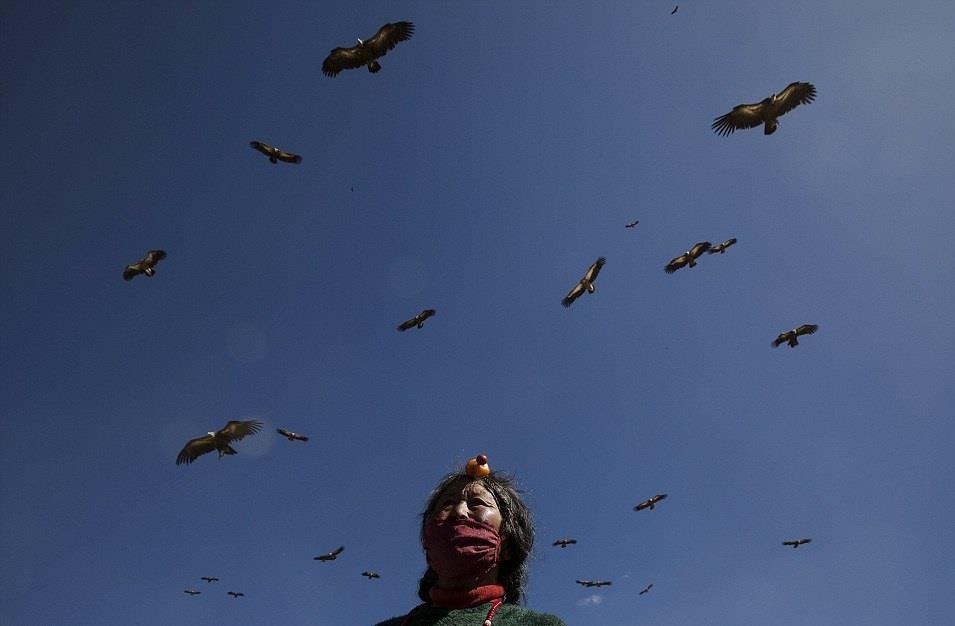 Tục điểu táng ngày nay vẫn tổn tại ở một số khu vực như Tây Tạng, Nội Mông, Thanh Hải (Trung Quốc) và Mông Cổ. Phong tục này còn có cách gọi khác là tục thiên táng, nghi lễ linh thiêng cho người đã khuất ở những vùng có truyền thống này, nhưng lại là cảnh tượng rùng rợn và ám ảnh với khách du lịch.