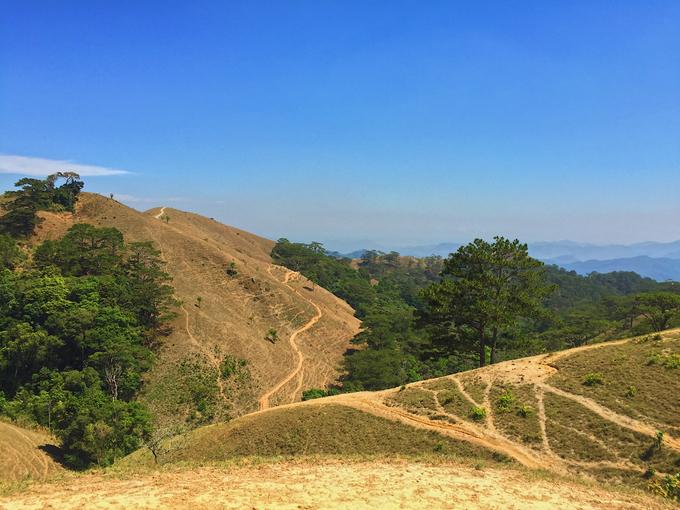 Tà Năng – Phan Dũng là cung đường dài hơn 50 km thuộc địa phận ba tỉnh Lâm Đồng, Ninh Thuận và Bình Thuận. Thảm thực vật đa dạng, khung cảnh hùng vĩ, độ khó vừa phải nên cung đường này phù hợp trekking với nhiều lứa tuổi.  Phía Tà Năng là cung đường đẹp, cây cỏ mọc hai bên đường, dốc không quá cao. Còn phía Phan Dũng (hướng xuống thác Yavly) đường khá trơn, ngoằn ngoèo, nhiều dốc, cây chủ yếu là thông. Ở đỉnh Tà Năng, buổi tối sương xuống khá dày và nhanh, gió đặc biệt thổi mạnh vào giữa đêm.