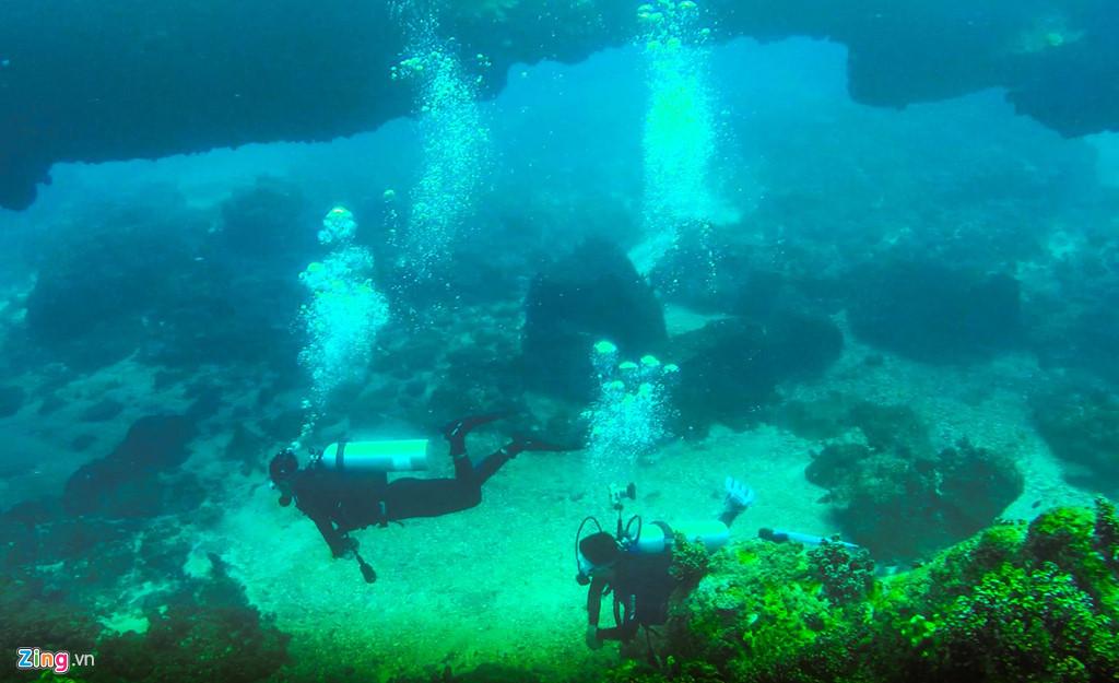 """""""Chiều hè, khi nước thủy triều rút thì san hô nơi đây chỉ cách mặt nước từ 2-3 m. Khác với nhiều vùng miền cả nước, san hô nơi đây có nhiều kích cỡ, màu sắc mọc trên nhiều cụm đá trầm tích núi lửa ở khu vực sát bờ"""", anh Bình cho hay."""