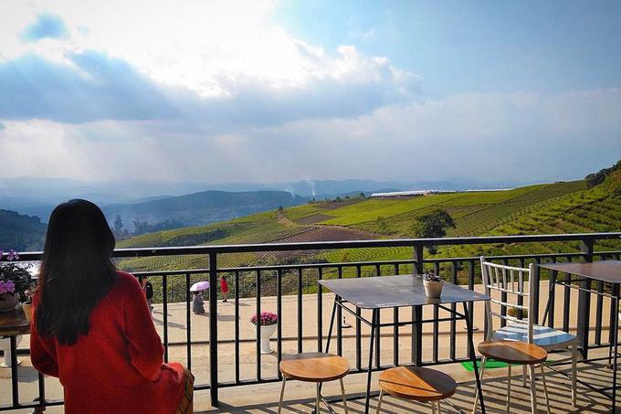 Cầu Đất Farm Quán cà phê toạ lạc bên trong đồi chè Cầu Đất - điểm du lịch nổi tiếng ở Đà Lạt, cách trung tâm thành phố chừng 30 km. Nếu như những địa chỉ trên cho bạn góc nhìn rừng núi, tại đây, bạn được dịp quan sát đồi chè xanh mướt và chạy dài tít tắp. Ảnh: Ngọc Cầm.