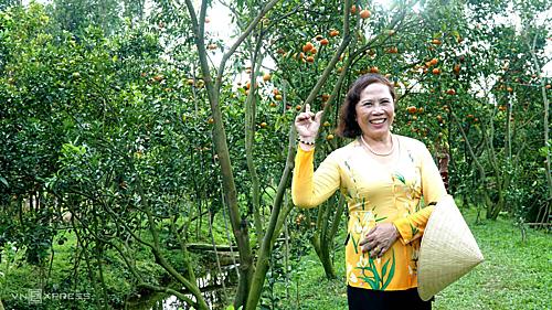 Du khách check-in tại vườn quýt Lai Vung, Đồng Tháp. Ảnh: Phong Vinh.
