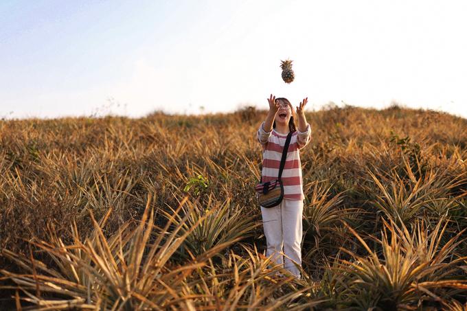 Buổi sáng với ánh nắng dịu nhẹ là lúc lý tưởng để bạn khám phá cánh đồng. Chiều hoàng hôn cũng là khoảnh khắc được nhiều bạn trẻ trông đợi. Ảnh: @mievatho.