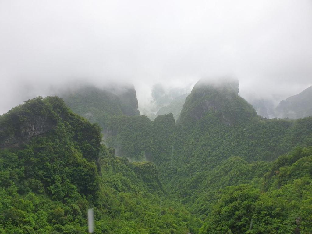 Tuyến cáp treo bắt đầu từ nhà ga Trương Gia Giới với 98 cabin và dài gần 7.500 m. Từ trên cao, quang cảnh cả vùng đất trời bao la, hùng vĩ thu gọn vào tầm mắt.
