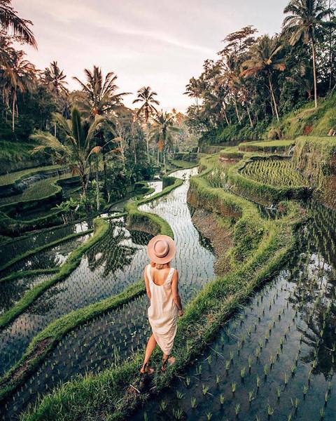 7. Ruộng bâc thang Tegalalang: Là một trong những ruộng bậc thang kiểu subak đẹp nhất ở Ubud, Tegalalang đã làm biết bao con tim của khách du lịch phải mê đắm trước cảnh sắc của mình. Xen kẽ những nếp ruộng xếp tầng xanh mướt là hàng dừa cao vút, sai quả, đặc trưng của một hòn đảo nhiệt đới hoang sơ. Ảnh: Leaguetravels