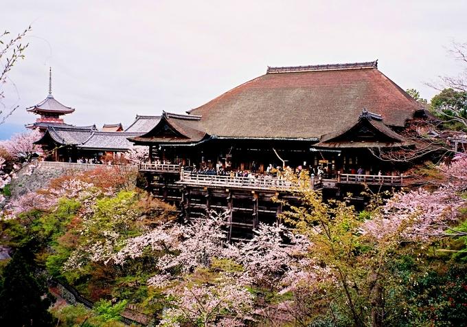 Chùa Kiyomizu (chùa Thanh Thủy) ở Kyoto là một trong những ngôi chùa có lịch sử lâu đời nhất tại Nhật, được xây dựng từ năm 778. Leo lên đến đỉnh, bạn có thể phóng tầm nhìn ngắm toàn cảnh cố đô của xứ sở mặt trời mọc.