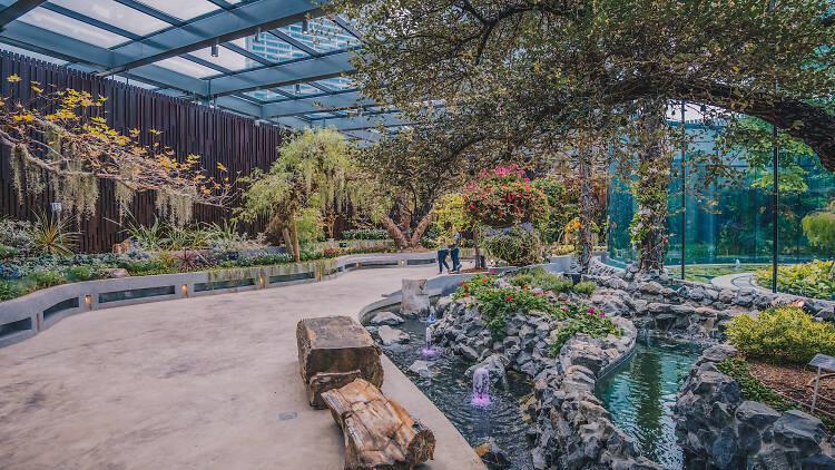 Mùa hè này, hãy cùng gia đình và bạn bè đến trải nghiệm khu vườn cổ tích Floral Fantasy.