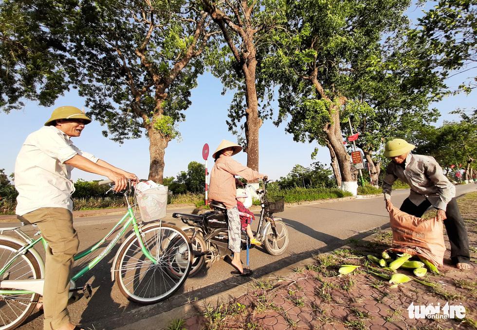 Người dân thu hoạch nông sản, đưa lên ven lộ bán cho người đi đường dưới hàng cây - Ảnh: DOÃN HÒA
