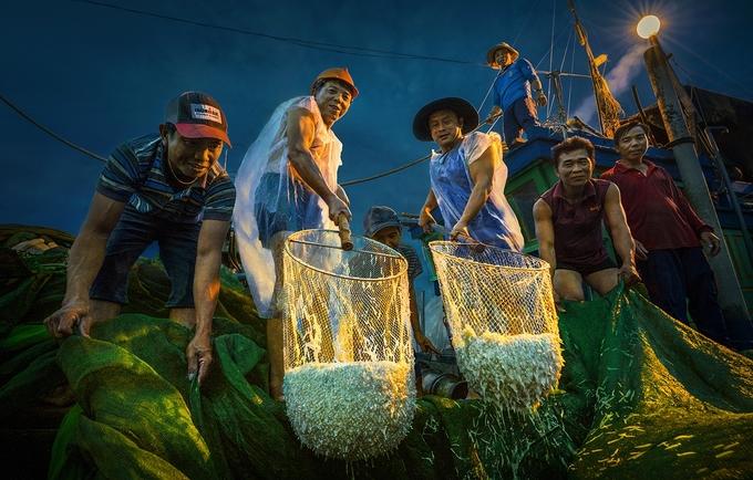 """""""Mỗi lượt đánh bắt thu hoạch được vài sọt cá, mỗi sọt hơn 10 kg và bán với giá hơn một triệu đồng"""", anh Hòa dẫn lời một ngư dân từ làng chài Nhơn Hội cho biết."""