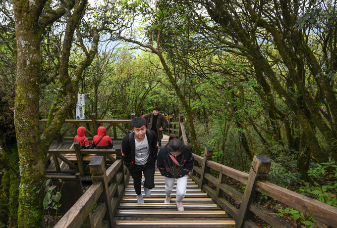 Để đến các điểm tham quan trên núi, du khách phải leo lên các bậc thang bằng gỗ trong khoảng 30 phút. Đoạn đường này lắp đặt sẵn nhiều ghế băng để khách ngồi nghỉ.