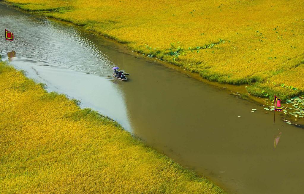 Giữa không gian lãng mạn với phông nền là những ngọn núi hùng vĩ, cánh đồng lúa vàng rực giữa dòng sông uốn ượn thơ mộng, bạn dễ dàng sở hữu cho mình một bức ảnh check-in tuyệt đẹp. Bởi vẻ đẹp nên thơ đó, mùa vàng Tam Cốc cũng thu hút rất nhiều nhiếp ảnh gia ghé thăm.