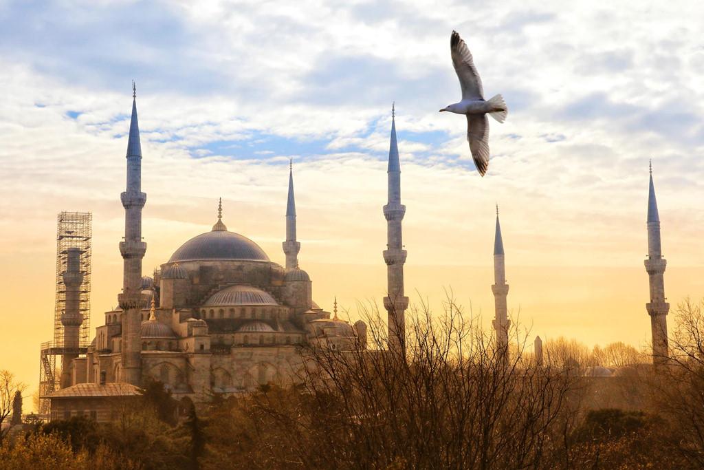 Các tác phẩm được ghi lại tại nhiều địa điểm nổi tiếng của Thổ Nhĩ Kỳ như Antalya, Konya, Cappadocia, Istanbul... được chụp bởi các nhiếp ảnh gia Việt.