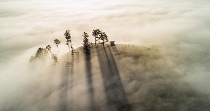 Nói đến thiên đường mây bay phố núi, bạn không thể bỏ qua thung lũng Dasar nằm trong những ngọn đồi phía ngoại ô thuộc huyện Lạc Dương. Khung cảnh hoang sơ với thông xanh khiến thung lũng Dasar càng huyền ảo.