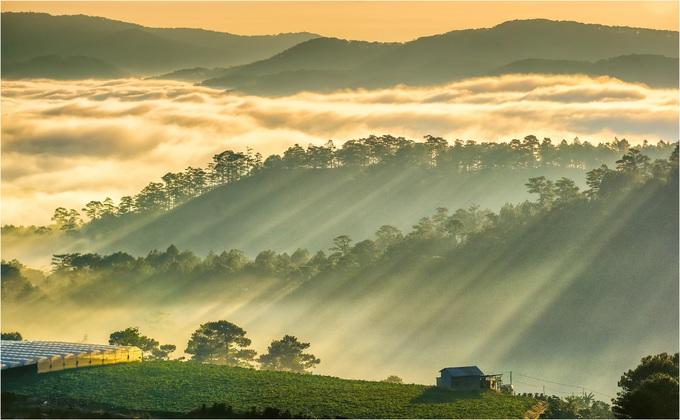 Đà Lạt còn có một ngọn đồi lãng mạn nhưng ít du khách ghé thăm, là đồi Túy Sơn (xã Xuân Thọ).