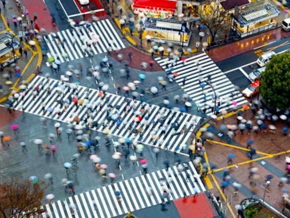 Giao lộ Shibuya nổi tiếng - Ảnh: Flickr
