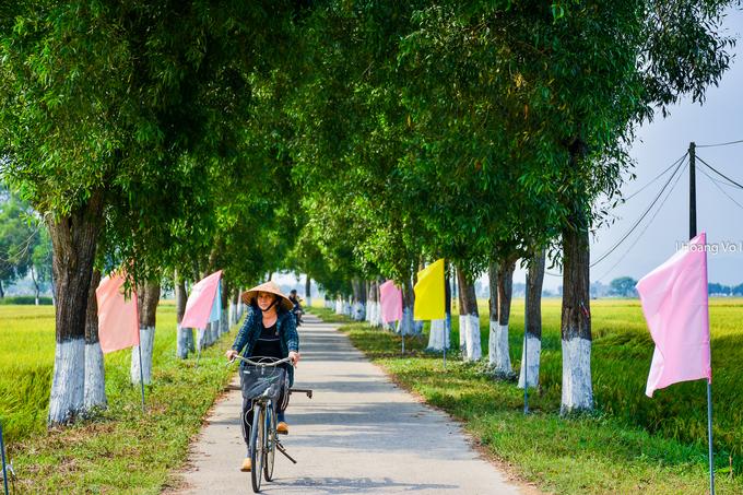 Đến La Chữ, du khách sẽ đi qua những con đường làng quê quen thuộc với hai hàng cây xanh tỏa bóng mát.