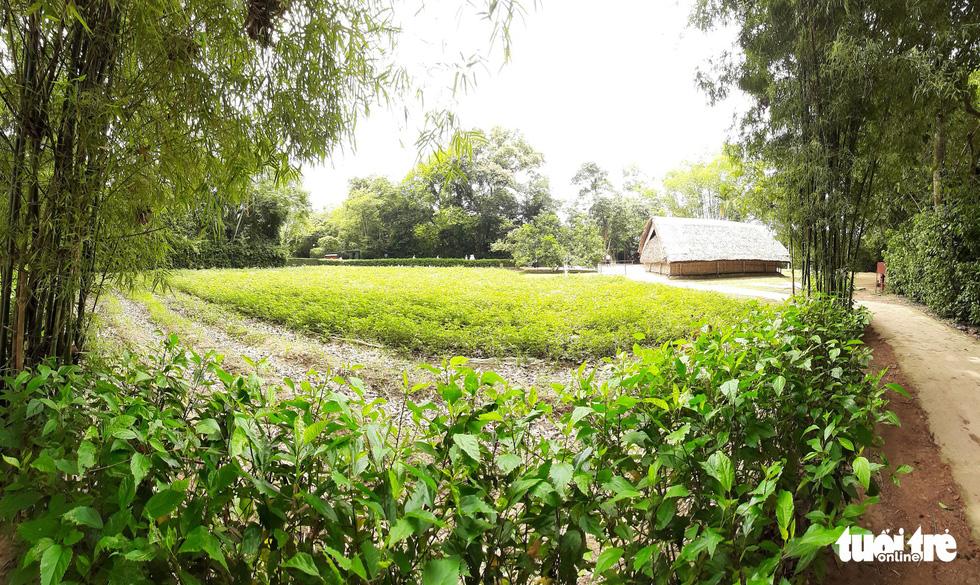 Làng Sen - quê nội của Chủ tịch Hồ Chí Minh. Trên con đường đất nhỏ dẫn vào ngôi nhà khi xưa Bác ở, đôi bờ tre rì rào trong gió, hàng râm bụt vẫn đung đưa nhè nhẹ, hoa cau, hoa bưởi còn thơm nồng - Ảnh: DOÃN HÒA