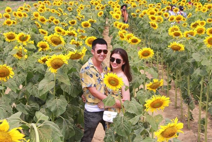 Vườn hoa hướng dương rộng 2.500 m2 ở phường Hương Long (TP Huế, Thừa Thiên Huế) do anh Phạm Xuân Quỳnh, 32 tuổi trồng đang vào thời gian nở rộ, thu hút giới trẻ đến tham quan.