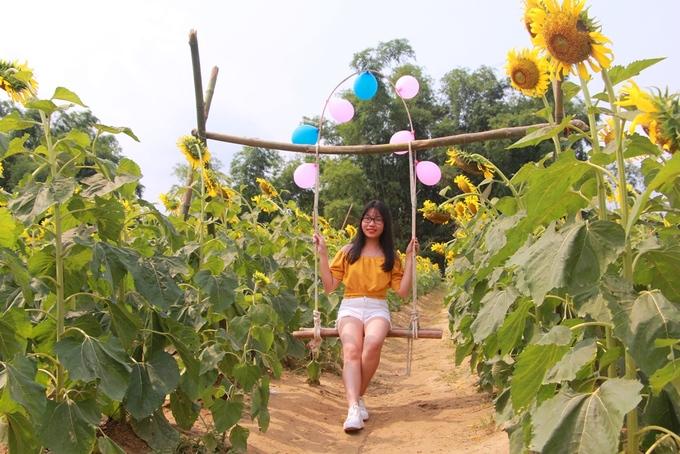 """Xích đu được anh Quỳnh thiết kế ngay giữa vườn hoa để du khách đến tham quan, nghỉ chân hay """"tạo dáng"""" chụp ảnh lưu niệm."""