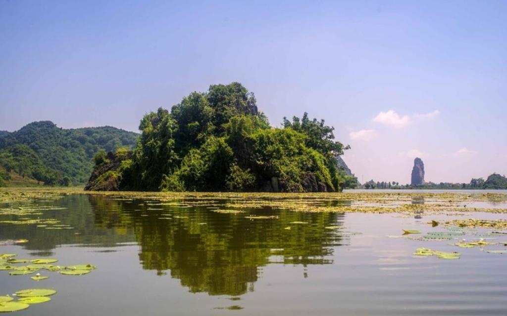 Thuê một chiếc thuyền đi dạo trên mặt hồ, bạn cảm giác như hòa mình vào thiên nhiên hoang sơ, rộng lớn. Không khí của hồ trong lành, những cơn gió nhẹ làm làn nước lăn tăn, gợn sóng nhìn rất thơ và yên ả. Những đóa sen vươn mình lên cao khỏi mặt nước tỏa hương thơm ngào ngạt và bung nở những cánh sen mỏng manh, tỏa sáng long lanh trong ánh nắng. Đến đây bạn không những được chụp ảnh mà còn được thưởng thức bức tranh thiên nhiên tuyệt đẹp. Vé vào cổng khoảng 15.000 đồng/người. Ảnh: truyenhinhdulich.