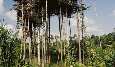 bo-toc-nguyen-thuy-song-giua-rung-gia-o-indonesia-ivivu-3