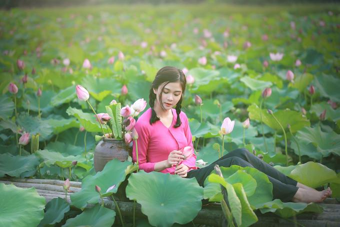 Ngoài chụp ảnh, du khách có thể xin phép người dân để tự tay hái những bông sen đang nở rộ.