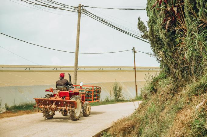"""Sài Gòn và Đà Lạt có thể nói là hai thái cực, để nghỉ ngơi sau những mệt mỏi của công việc trong tháng nên chàng trai 24 tuổi quyết định chọn chuyến đi """"đi qua mùa hạ"""" ở Đà Lạt."""