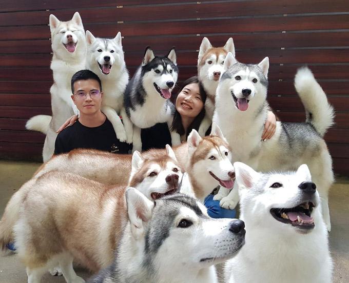 """Những chú chó nhanh chóng vào vị trí khi được """"lệnh"""" chụp ảnh cùng khách."""