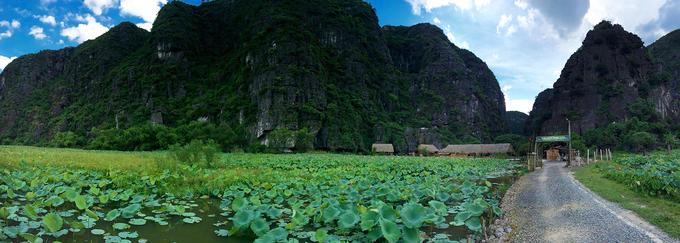 Chezbeo Valley Bungalows toạ lạc trong làng Khả Lương, Hoa Lư, Ninh Bình, cách trung tâm Hà Nội khoảng 130 km. Để vào đến homestay, bạn sẽ băng qua những cánh đồng lúa bát ngát, nơi có nhiều nông dân đang làm việc trước khi bắt gặp ao sen rộng lớn. Ảnh: Chezbeo.