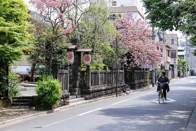 Bạn có thể bắt đầu ngày mới bằng chuyến thăm điểm du lịch nổi tiếng - Kiyosumi Teien. Khu vườn Nhật Bản ban đầu được xây để phục vụ lãnh chúa phong kiến. Năm 1923, nơi này còn được sử dụng làm khu vực sơ tán trong trận động đất Kanto.