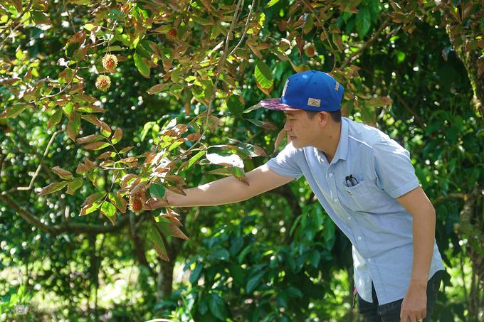 Mùa hè cũng thích hợp để tham quan các vườn trái cây. Khách có thể chụp ảnh, tự tay hái trái và mua ngay tại vườn để mang về làm quà.