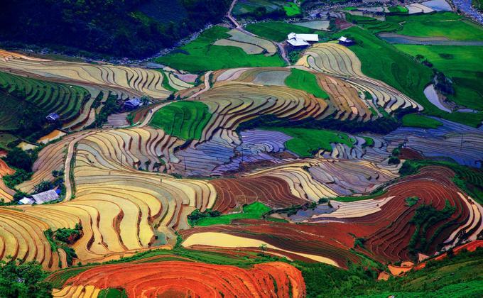 Sắc màu ruộng bậc thang mùa nước đổ và những ngôi nhà của người Mông nép mình bên đèo Khau Phạ.