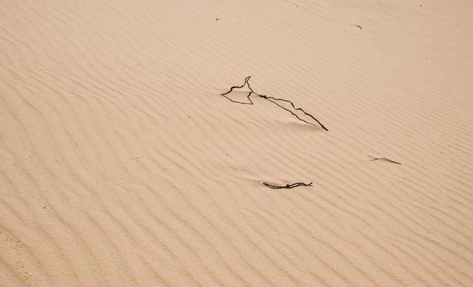 Khu vực này trước đây là một đồi cát hoang sơ, nay được quy hoạch thành điểm du lịch và vẫn đang trong giai đoạn xây dựng. Các đồi cát ở Phương Mai được cho là lý tưởng để chơi trượt cát bởi chiều cao từ 20 đến 100 m so với mực nước biển và độ dốc vừa phải.