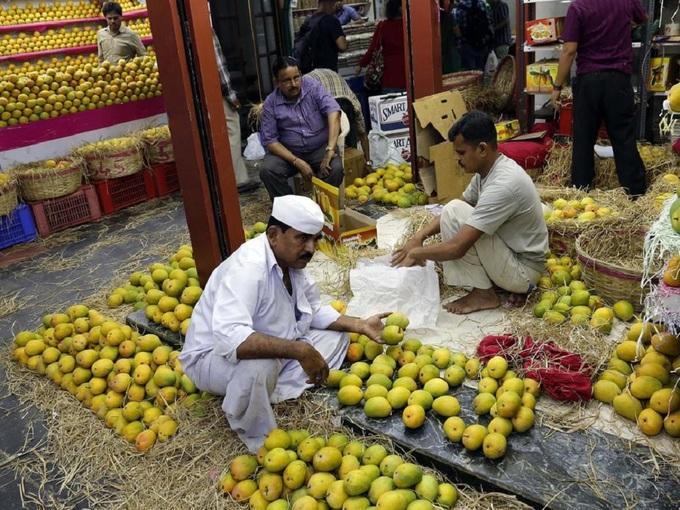 Du lịch Ấn Độ và những điều khách du lịch ít ai biết: đất nước này là vựa xoài lớn nhất thế giới- 6