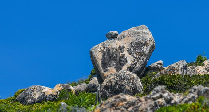 """Anh Nguyễn Vinh Niên, một người dân khác cho biết, hầu hết tảng đá đều nằm trên những ngọn đồi cao từ 10 đến 20 m, khách du lịch khó tiếp cận. """"Nếu những hòn đá này ở thấp một chút có thể đã nổi tiếng vì mọi người check-in nhiều"""", anh Niên nói."""
