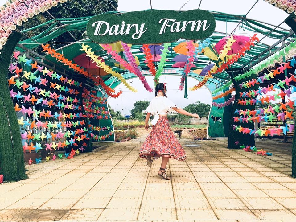 nong-trai-Dairy-Farm-hot-nhat-Moc-Chau-ivivu-7