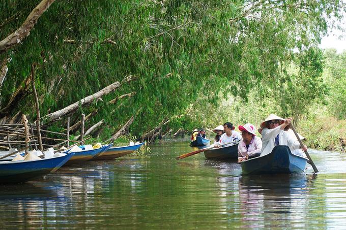 Sau khi vào sâu hơn, khách chuyển qua xuồng chèo tay để khám phá khu rừng. Lúc này, bạn được dịp quan sát kỹ hơn hệ thống động thực vật. Vì không phải mùa nước nổi, người dân nơi đây phải đào đất cho lòng sông rộng hơn, để thuyền có thể dễ dàng di chuyển.
