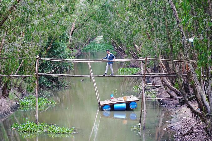 Khi cập bến trong rừng, khách có thể ghé nhà hàng thưởng thức các món đặc sản, trải nghiệm đi cầu khỉ hoặc leo lên tháp quan sát để ngắm cả khu rừng từ trên cao.  Khách tham quan rừng tràm Trà Sư phải mua vé, dao động từ 100.000 đồng cho nhóm trên 5 người.