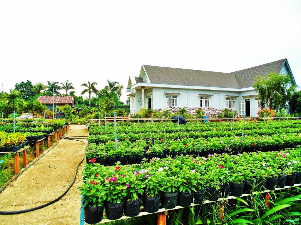 Flower Village Homestay - IVIVU-1