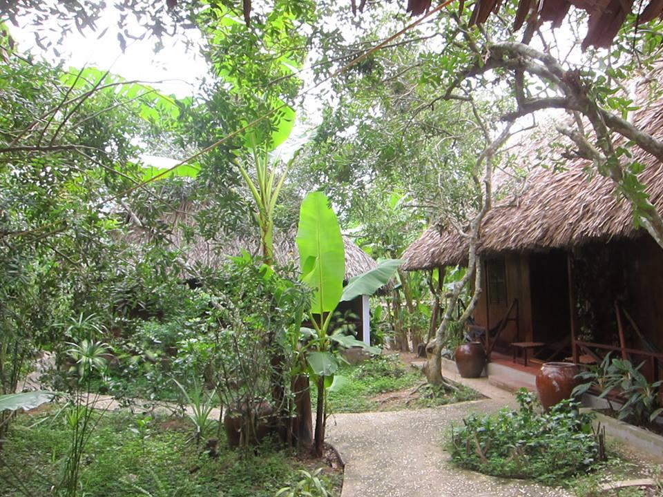 Le Jardin du Mékong - ivivu-1